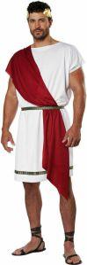 California Costumes - Party Toga - Unisex Adult Costume - 2 Shawl Options!