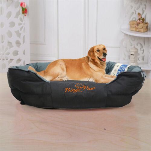 extra large jumbo orthopedic pet dog