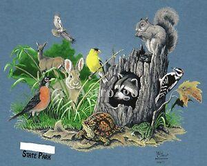 Backyard Animals Squirrel Bunny Turtle Deer Raccoon ...