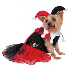 Harley Quinn Costume Pet Harley Quinn Halloween Fancy Dress