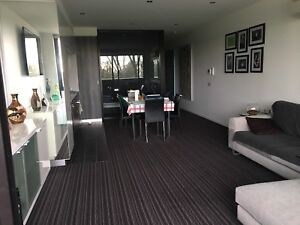 St Kilda 3182 Vic Property For Gumtree Australia Free Local Classifieds