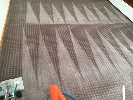 Carpet Cleaning Perth Great Results And 26 Reviews