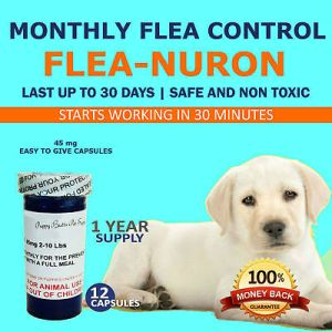 1 Year Supply MONTHLY Flea Control for Dogs 2-10 Lbs. 45 Mg PB 12 Capsules