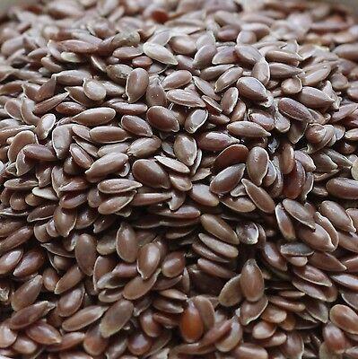 1 kg Leinsaat Leinsamen 1000 g Flachs Speisequalität ohne Zusatzstoffe gereinigt