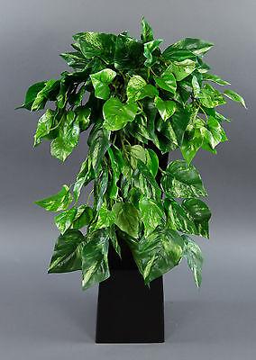 Photosranke 50cm grün-gelb AD künstliche Pflanzen Photos Kunstpflanzen