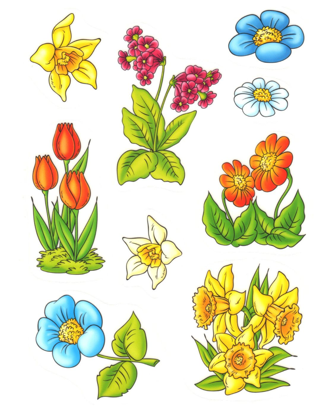 Fensterbild Set Blumen Blüten Tulpe Narzisse u.a Fenstersticker Fenster Deko