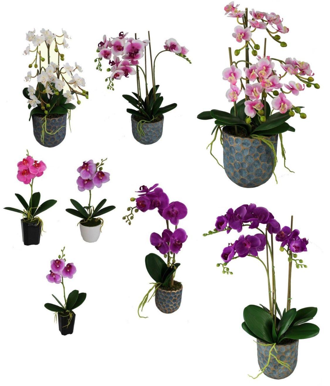 Künstliche Blumen in Topf Kunstpflanze Kunstblume 35-62 cm Orchideen Latex