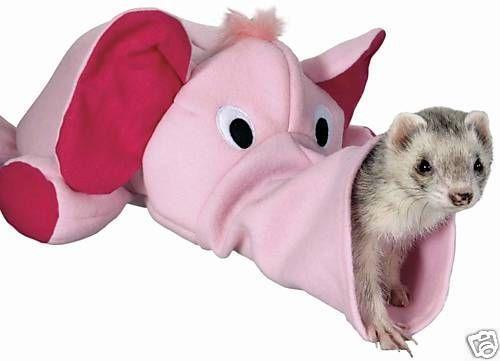 Ferret Toys Small Animal Supplies EBay