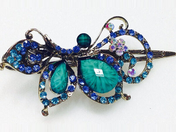 Jewel Hair Clips