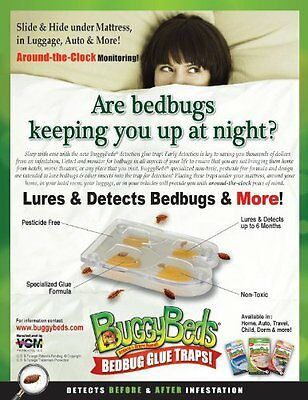 How To Get Rid Of Bed Bugs Glue Trap Insect Detection Interceptor BuggyBeds(4Pk)