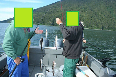 Sabiki 5 Shrimp Rigs Glow in the dark Baits Fishing Lures Catch Hooks Sea Bass 10