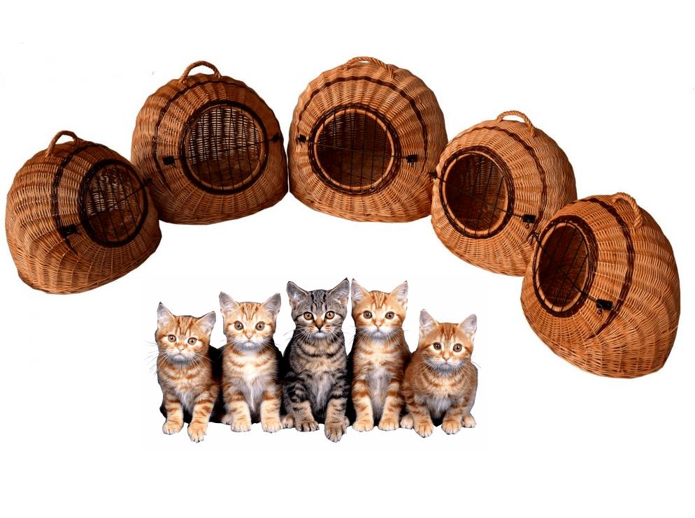 Katzenkorb Fünf Größen Transportkorb Transportbox Katzenbox  Weide nicht Rattan