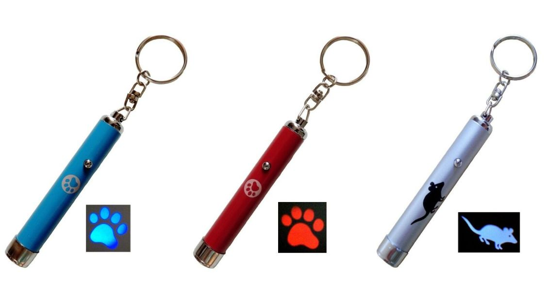 LED Pointer Pfotenmotiv Mausmotiv rot blau Katzenspielzeug - kein Laserpointer