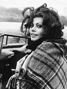 details zu vintage photograph actress sophia loren sexy star poster art print lv11301