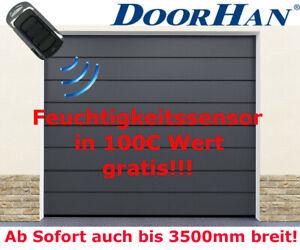 Doorhan Porte Garage Sektionaltor Satinegray Moteur A Auto Assemblage Ebay