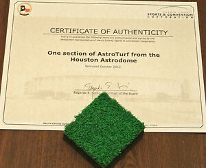 Image result for astrodome astroturf