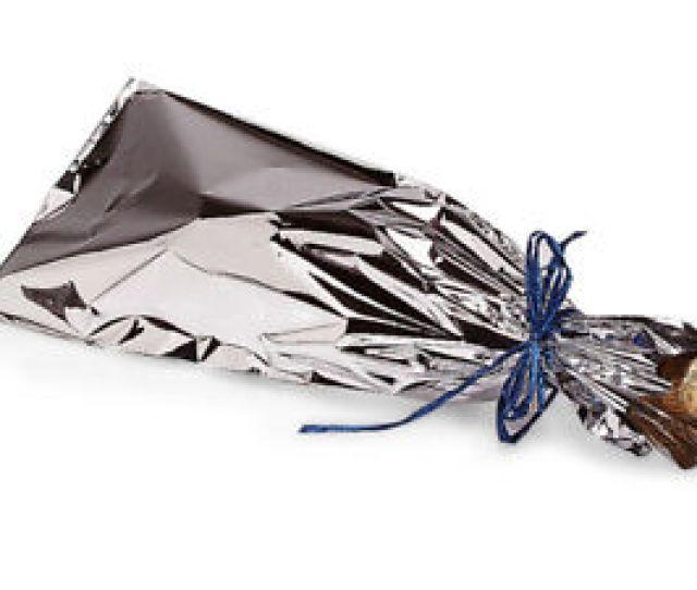 Image Is Loading  Mylar Metallic Silver Wine Gift Bags Holiday