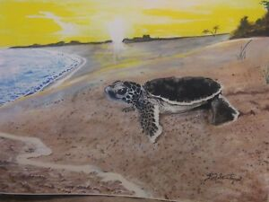 Baby Sea Turtle On Beach Headed To Sea At Sunrise Drawing Ebay