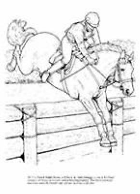 Dover Nature Coloring Book Ser Big Book Of Horses To Color By John Green 2006 Coloring Connect The Dot Book For Sale Online Ebay