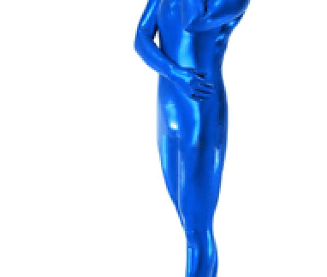 Image Is Loading Halloween Costume Adult Women Blue Zentai Sexy Metallic