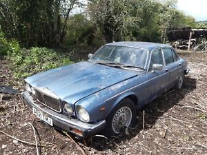 Jaguar Daimler Sovereign find Restoration Project