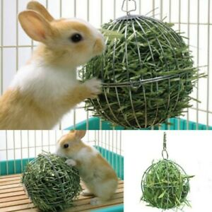 details about stainless steel rabbit feeder ball animal bunny hay grass shelf rack toys new