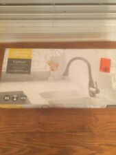 raleigh pull down kitchen faucet