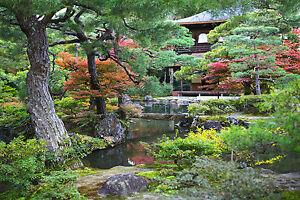 details sur superbe zen japonais jardin paysage toile 366 nature photo wall art 30x20 afficher le titre d origine