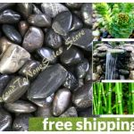Polished Black River Rocks Natural Decorative Stones Garden Fountain Display 5lb