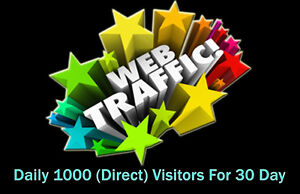 Daily 1000 Worldwide Direct Website Traffic For 30 Days package.