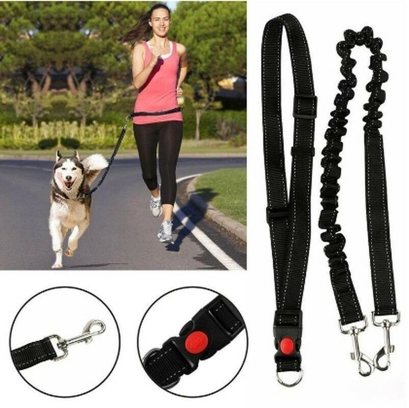 Dog Collar Leash Running Walking Puppy Leading Belt Nylon Adjustable Rope #HN