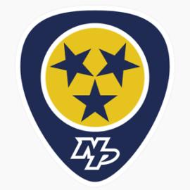 Image result for nashville predators logo