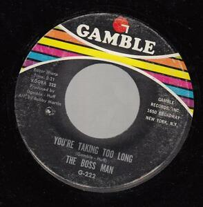 HEAR! Northern Soul R&B 45 THE BOSS MAN You're Taking too Long on Gambel   eBay
