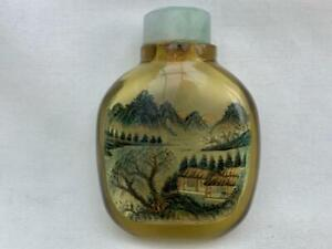 Beautiful Vintage Chinese Inside Painted Glass Snuff Bottle