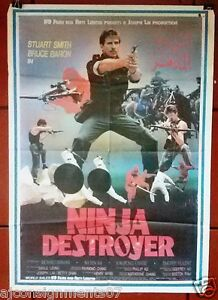 Poster do filme Ninja Destroyer