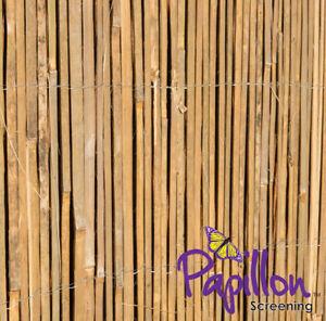 details sur canisse bambou fendu latte palissade cloture jardin naturel decor ecologique