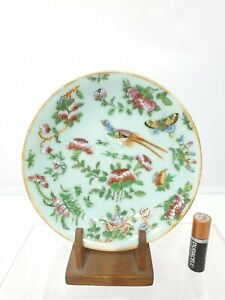 """Superb Chinese Antinque Canton Famille Rose Celadon Saucer/Dish 5.75"""" Qing 19thc"""