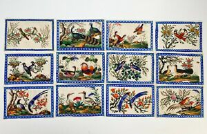 Collection of 12 Antique Chinese Pith Rice Paper Paintings of Birds
