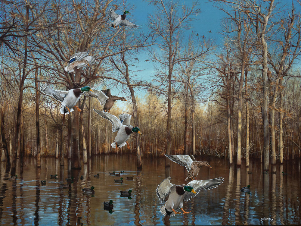 2014 Arkansas Ducks Unlimited Sponsor Print Signed Artist