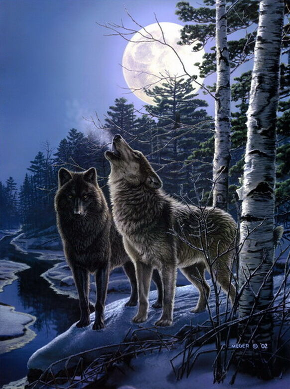 Home art wall Decor howling of the wolves Wolf oil ...