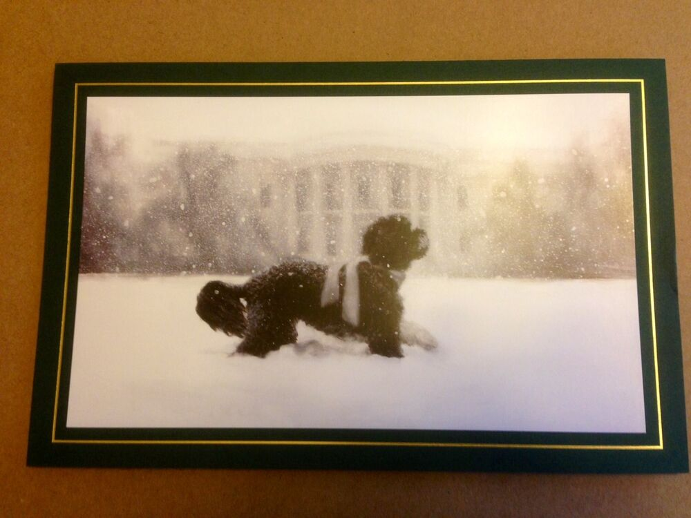 Official 2012 White House Christmas Card Holiday President