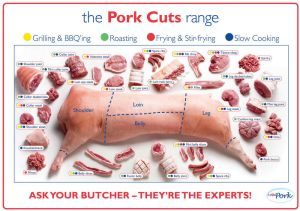 pork cuts pig diagram poster High Quality Silk wall Poster