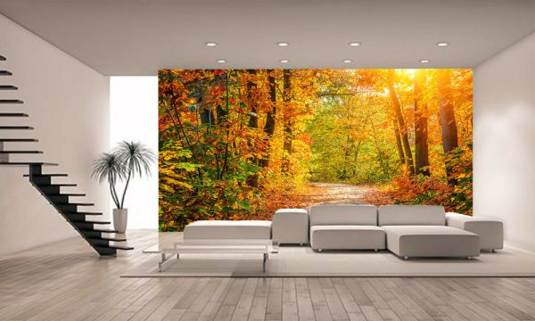 photo wall murals Autumn Forest Wall Mural Photo Wallpaper GIANT WALL DECOR PAPER POSTER | eBay
