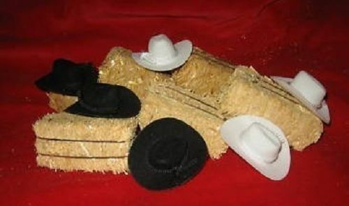 Western Wedding Party Favors 6 Mini Cowboy Hats Amp 6