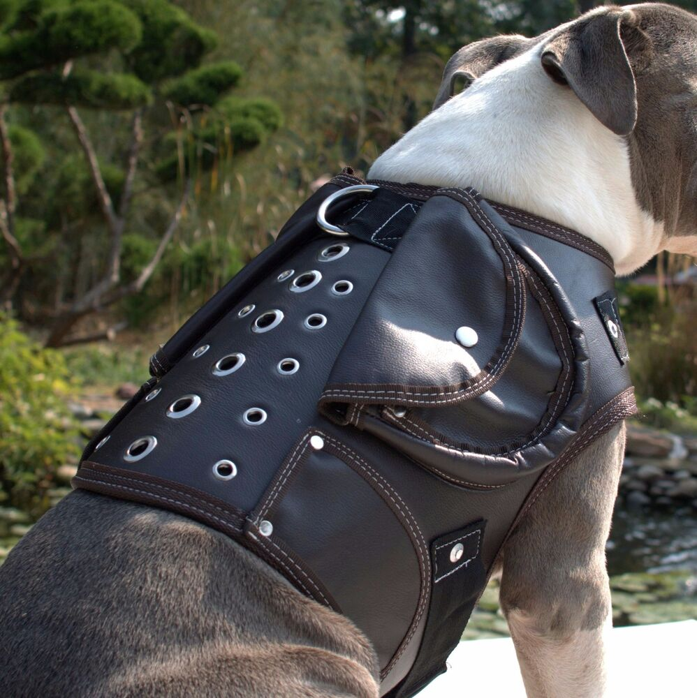High Quality Leather Dog Coat Jacket Collar Harness Brown