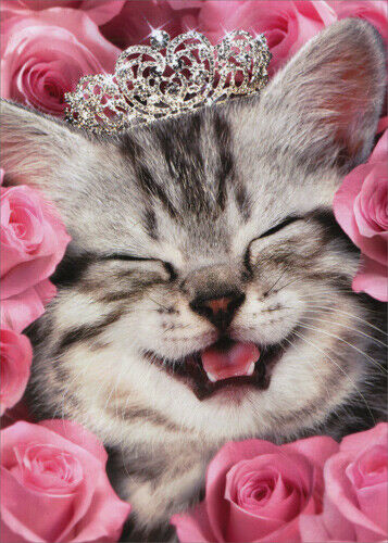 Kitten Face Flowers Tiara Cat Birthday Card Greeting