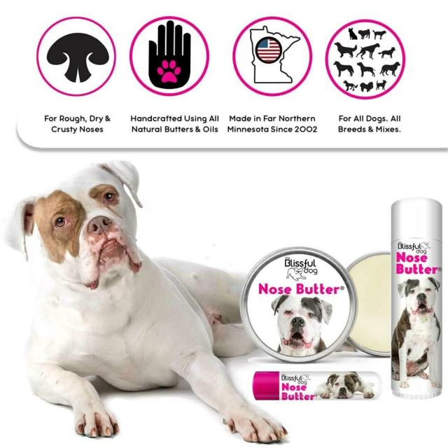 american bulldog nose butter for dry crusty dog nose several sizes