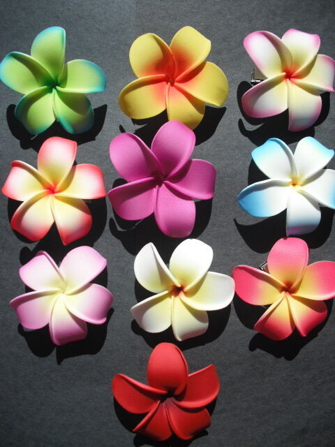 Set Of 10 Hawaiian Plumeria Foam Flower Hair Clips Pointed