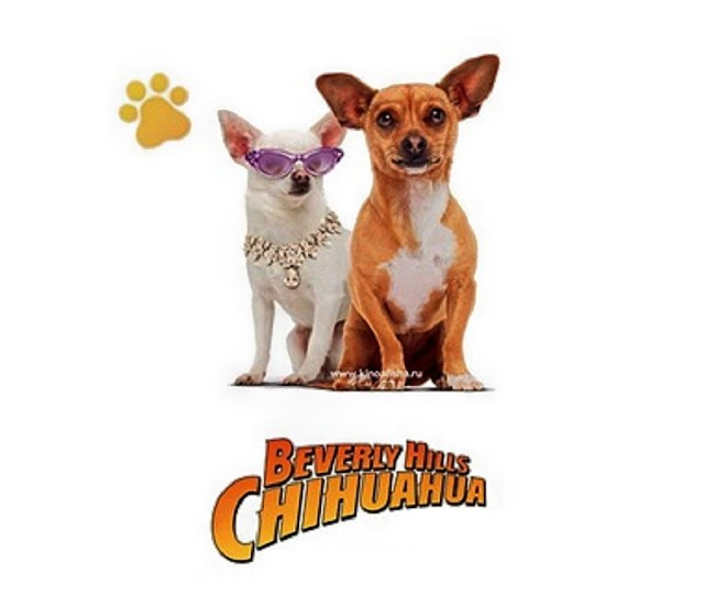 Details About Disney Beverly Hills Chihuahua 1 3 Viva La Fiesta Blu Ray Dvd Slipcover