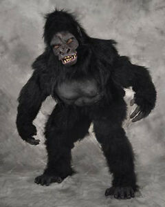 gay furry chimp